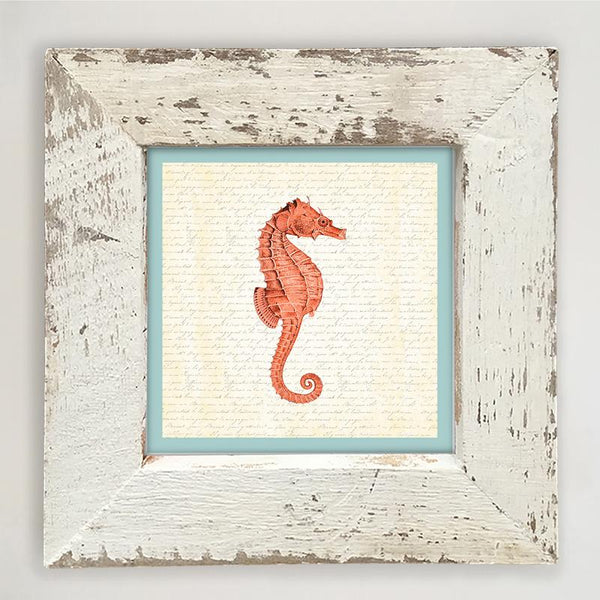 Sea Horse - Coral Small / White