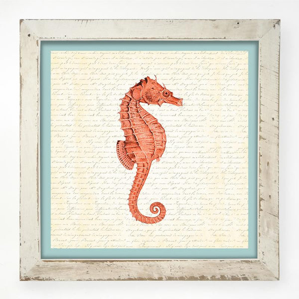 Sea Horse - Coral XL / White