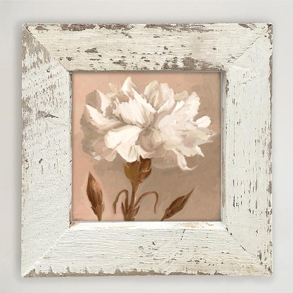 Carnation Small / White