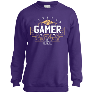 Gamer Youth Crewneck Sweatshirt
