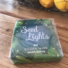 5M Seed Lights - Warm White - Silver Wire