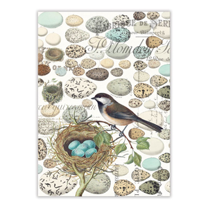 Michel Design Works Nest & Egg Tea Towel