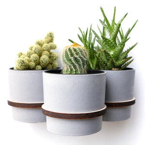 wall, plant, hanger, pot, flower, succulent, triple pot, 3 pot, wooden, planthanger, wallpot, wall plant