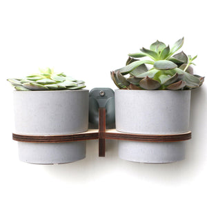 wall, plant, hanger, pot, flower, succulent, double pot, 2 pot, wooden, planthanger, wallpot, wall plant