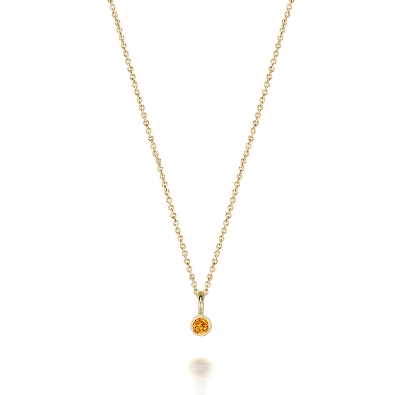 14kt Birthstone Charm Necklace