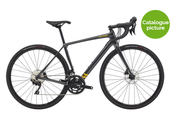 2020 Synapse Carbon Womens 105 Disc