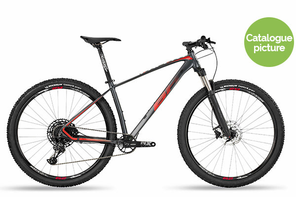 2019 Expert 29 NX RS30 12sp - Grey