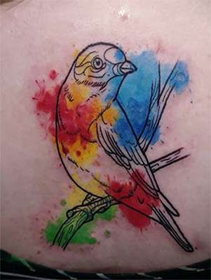 Water Color Bird tattoo done by Amber   Club Tattoo