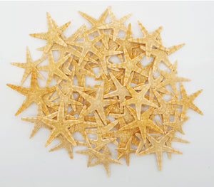 10 Ten Starfish Natural 1/4 - 1 - Collectables:rocks Fossils & Minerals:shells