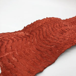 Handmade Red Dyed Pirarucu Arapaima Amazon Peruvian Leather - Collectables:animal Collectables:fish & Marine Life:fish