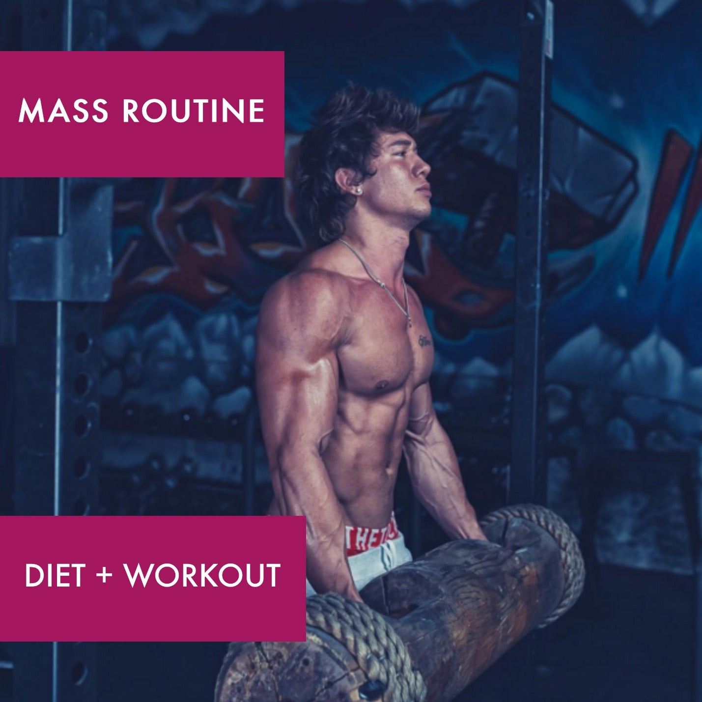 MASS (DIET + WORKOUT)