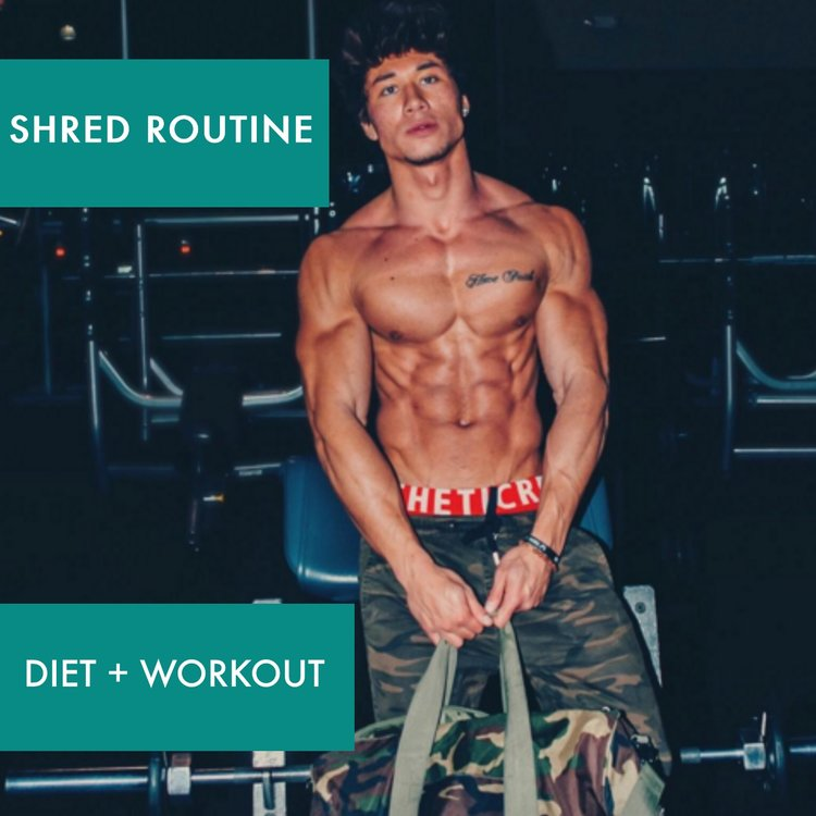 SHRED (DIET + WORKOUT)