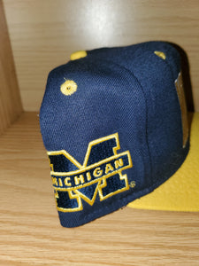 Vintage Michigan Hat