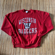 Load image into Gallery viewer, L(See Measurements) - Vintage 90s Badgers Sweater