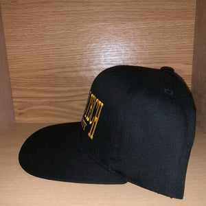 Vintage Michigan Tech University Hat