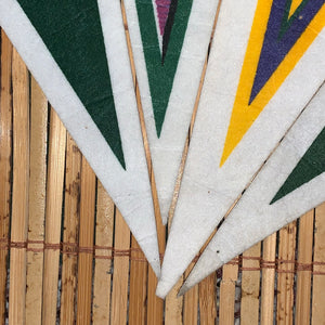 Vintage Packers Pennant Bundle
