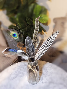 Bohemian Feather Arrangement | 4 Different options available