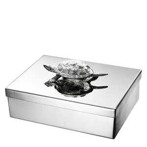 Jewel Box Tortoise