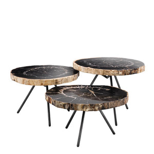 Coffee Table De Soto set of 3