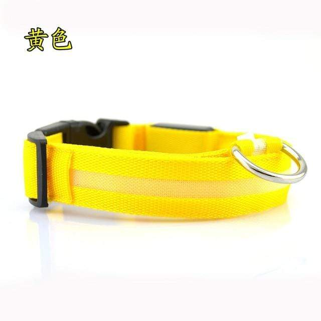 Nylon LED Pet dog Collar,Night Safety Flashing In The Dark Dog Leash.