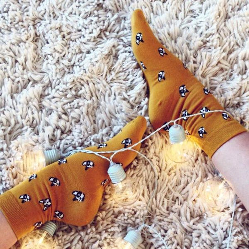 Doggo Socks - Orange
