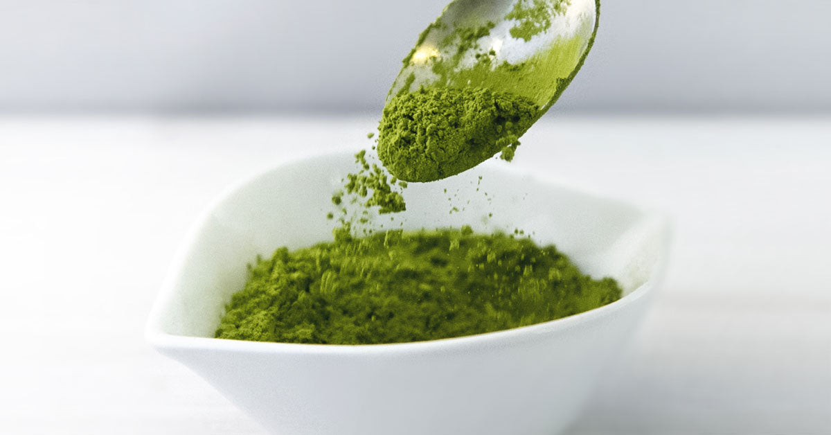 What Is Matcha Green Tea