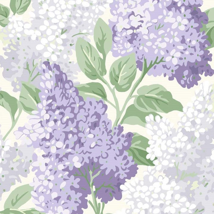 Shades of Purple/Green on Cream