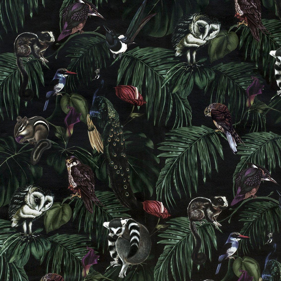 Dark Cotton Half Panama Fabric