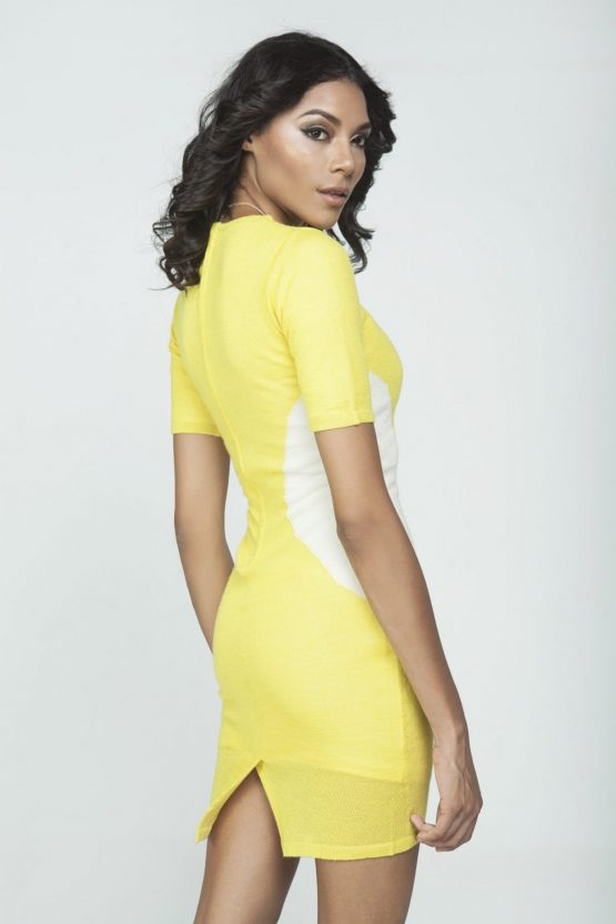 Chloe Dress in Citron and Cream