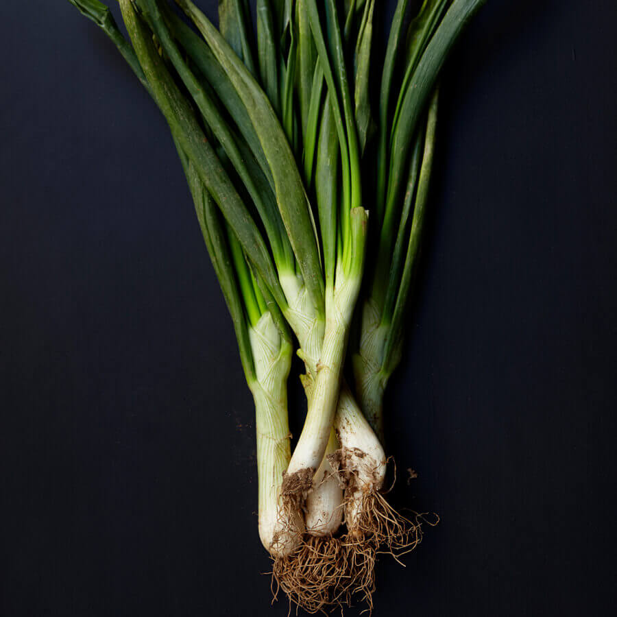 Calcots