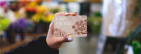 "A gift card is held. Text on the Gift Card states: ""A Gift For You"" with a value of 50 Dollars"