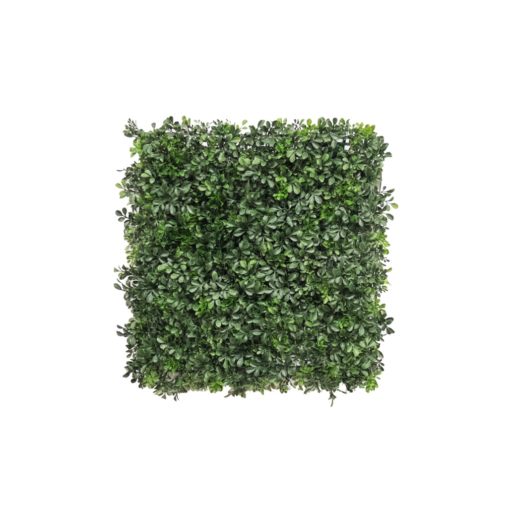 "Boxwood Mats 20"" (Pack of 12)"