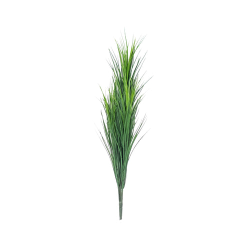 WHEAT GRASS (PACK OF 2)