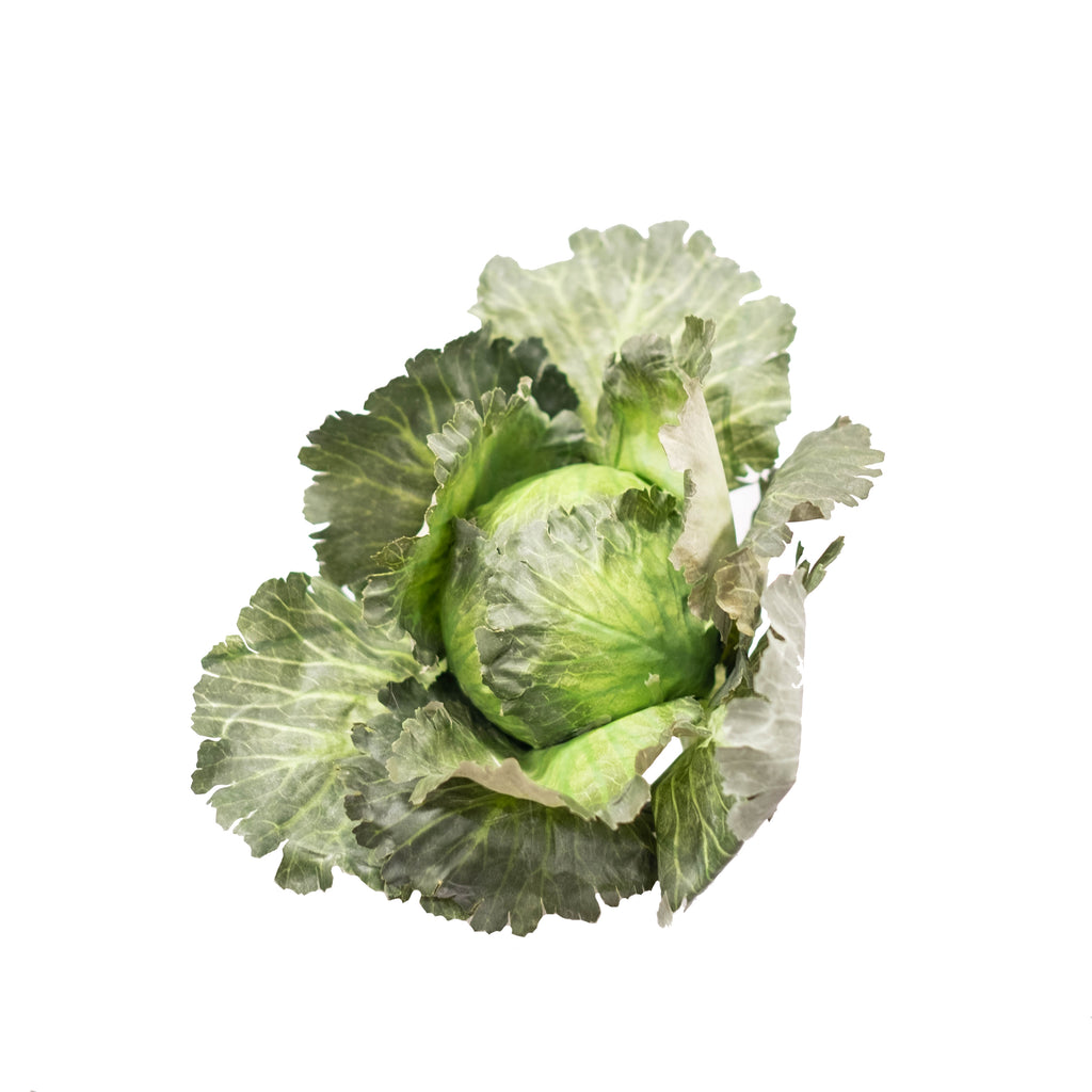 Kale (Pack of 2)