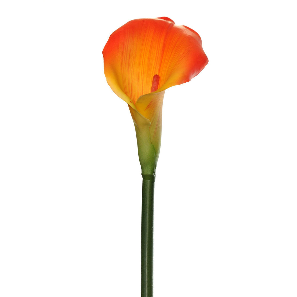 "Large Calla Lily 25"" (Pack of 6)"