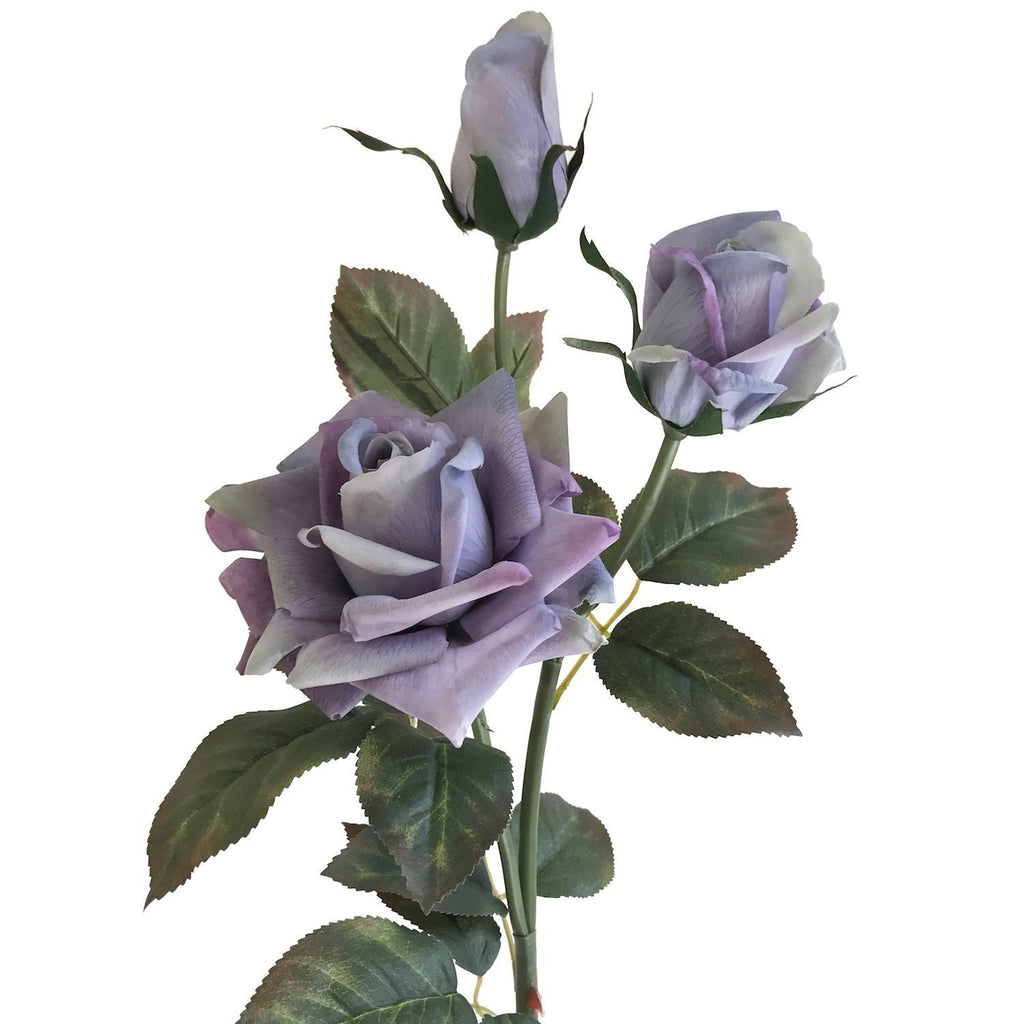 "Diamond Rose 34"" (Pack of 3)"