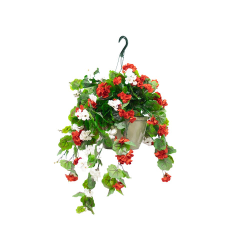 The Great Canadian Hanging Basket
