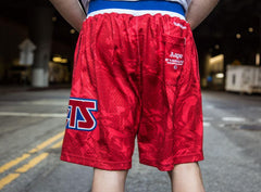 Brooklyn Nets AAPE by A Bathing Ape x Mitchell and Ness Shorts