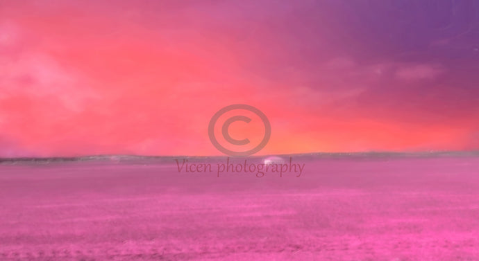 Drawn landscape on a pink sunset in the countryside