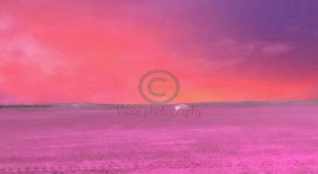 Drawn Landscape On A Pink Sunset In The Countryside - Art Print