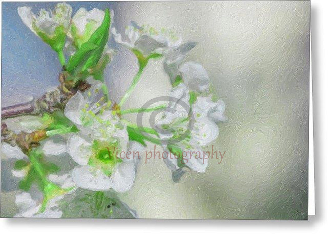 Almond Flowers With Impasto Effect - Greeting Card
