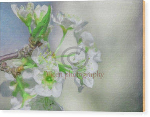 Almond Flowers With Impasto Effect - Wood Print