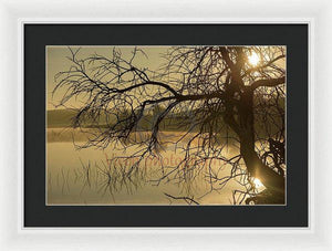 Tree Next To The Guadiana River At Dawn - Framed Print