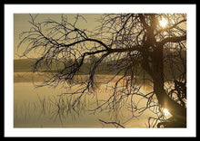 Load image into Gallery viewer, Tree Next To The Guadiana River At Dawn - Framed Print