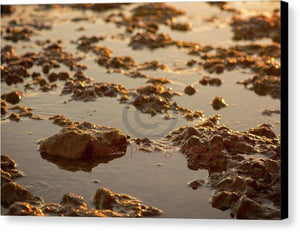 Small Stones On The Beach - Canvas Print 10.000 X 6.625 / Black Glossy
