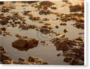 Small Stones On The Beach - Canvas Print 10.000 X 6.625 / White Glossy