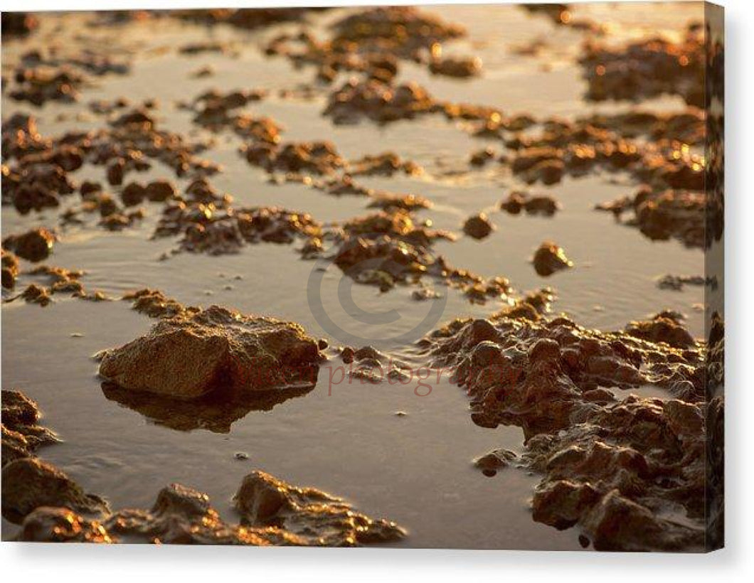 Small Stones On The Beach - Canvas Print 10.000 X 6.625 / Mirrored Glossy