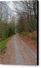 Load image into Gallery viewer, Rural Road In A Forest Of Fuente De - Canvas Print