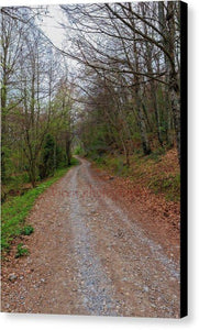 Rural Road In A Forest Of Fuente De - Canvas Print
