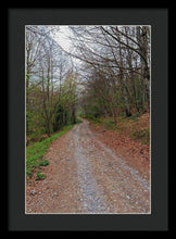 Load image into Gallery viewer, Rural Road In A Forest Of Fuente De - Framed Print